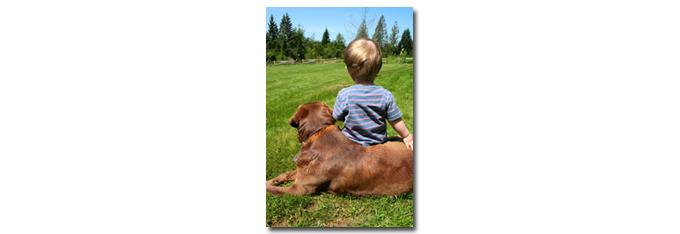 honden_kinderen