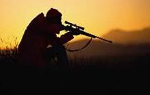 Animal hunting / jagen